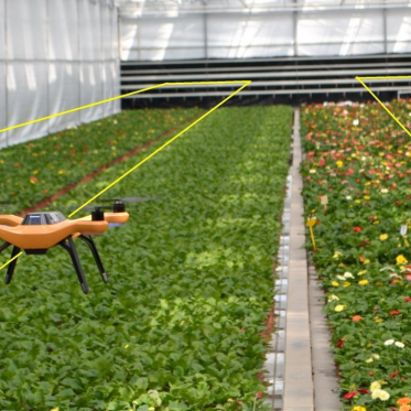 Greenhouse monitoring drones
