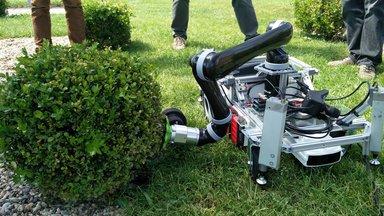 Garden trimming robot